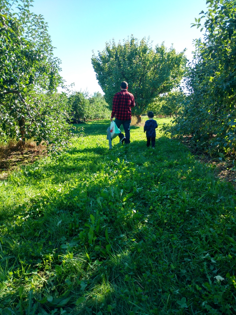 Anthony N. White - Pearl in the Apple Orchard